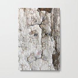 White Decay I Metal Print