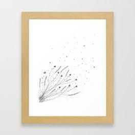 Chamomile Flowers Black and White Framed Art Print