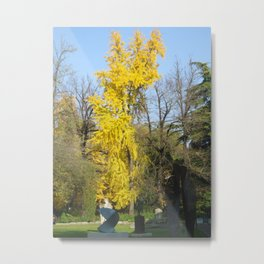Autumn in Padua Metal Print