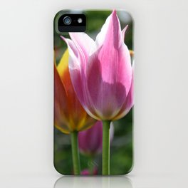 Field of Tulips by Mandy Ramsey, Haines, Alaska iPhone Case