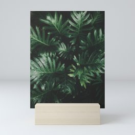 Tropical Green Plants Houseplants Garden Nature Photography Mini Art Print