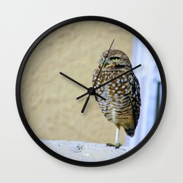 Friendly Visitor Wall Clock