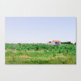 American Flag barn in Texas Canvas Print