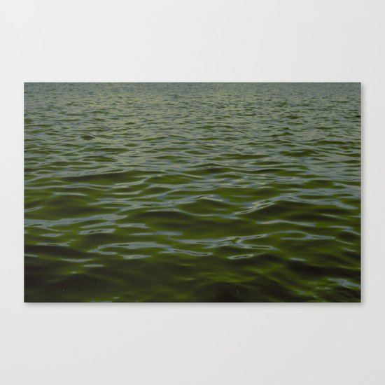 Water 4 Canvas Print