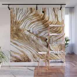 Organic design Tree Wood Grain Driftwood natures pattern Wall Mural