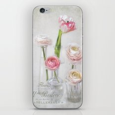 4+1= spring iPhone & iPod Skin