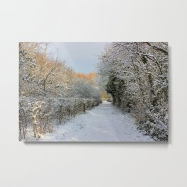 Winter Walkway Metal Print