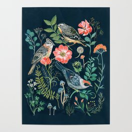 Birds Garden Poster