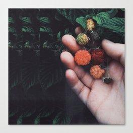 Psychadellic Berries Canvas Print