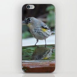 Reading the Evening Mirror iPhone Skin