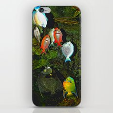 At the Aquarium iPhone Skin