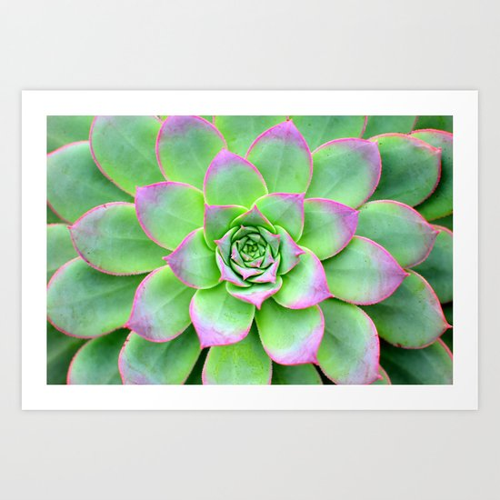 The Longest Bloom Art Print