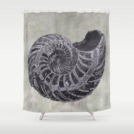 Ammonite study Shower Curtain