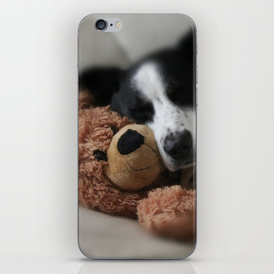 A Dog and his Bear iPhone & iPod Skin