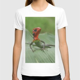 Gecko iguana Red Head T-shirt