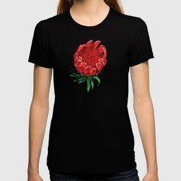 Beautiful Protea Flower - Wonderful Australian Native Flower T-shirt