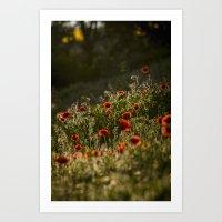 Virágágy Art Print