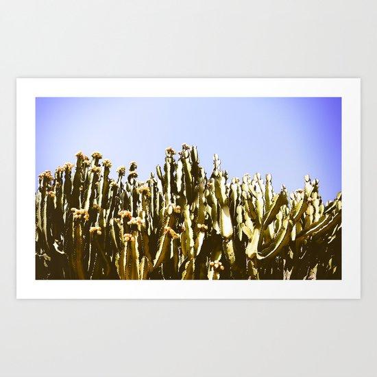 Sticky Cacti Art Print