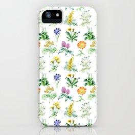Seamless Herbs Pattern iPhone Case