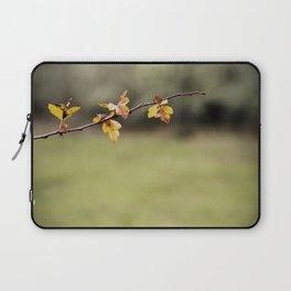 delicate (Oregon) Laptop Sleeve