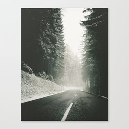 Forest Road In Winter Canvas Print