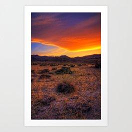 Desert Delight Art Print