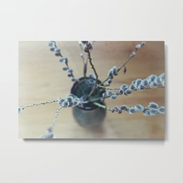 Early Signs of Spring Metal Print