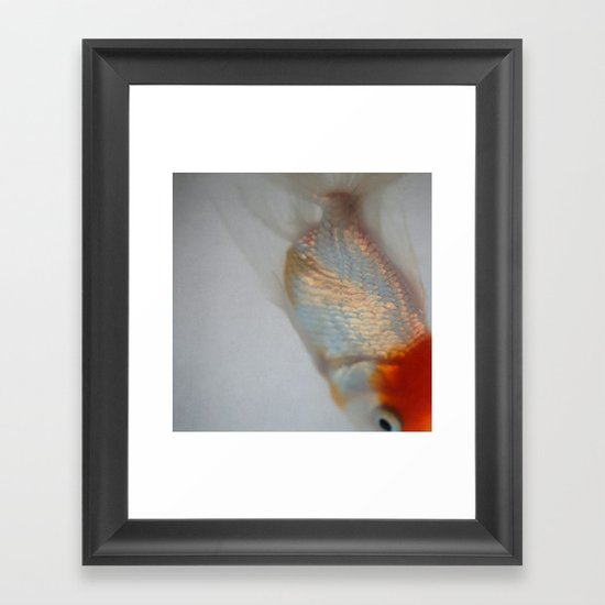 Fin #1 Framed Art Print