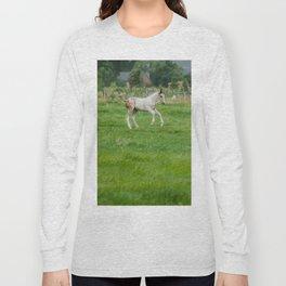 Playful colt Long Sleeve T-shirt