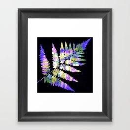Fern in disguise - winter Framed Art Print