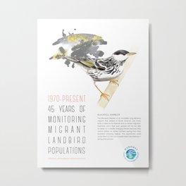 45 Years of Monitoring Landbird Populations - Blackpoll Warbler   Metal Print