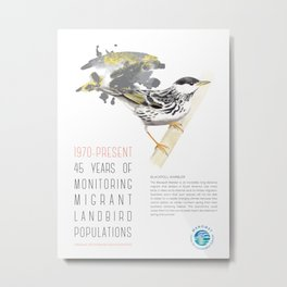 45 Years of Monitoring Landbird Populations - Blackpoll Warbler   Metal Print