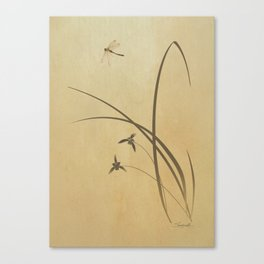 Orchid and Dragonfly Canvas Print