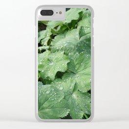 Alchemilla vulgaris Clear iPhone Case
