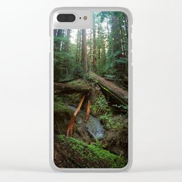 Humboldt Redwoods State Park Clear iPhone Case