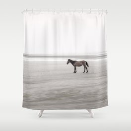 Horse a la playa Shower Curtain