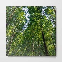 Green breeze #homedecor Metal Print