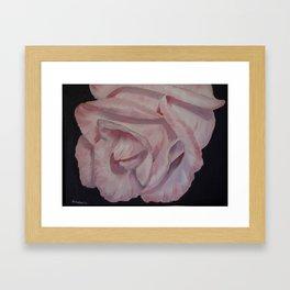 Pink Rose on black  Framed Art Print