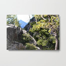 Clinging to the Brink over Vallecito Creek Metal Print