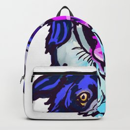 the Border Collie love of my life! Backpack