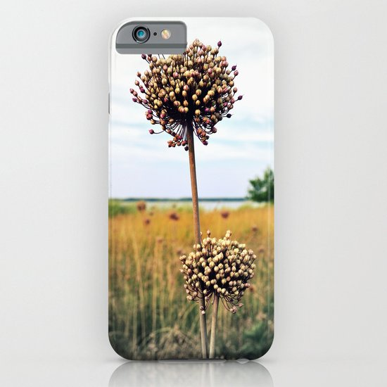 "Yorktown ""Onion"" iPhone & iPod Case"