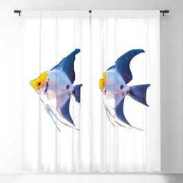 Angel Fish Blackout Curtain