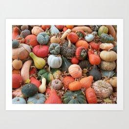 cornucopia (heirloom pumpkins and squashes) Art Print
