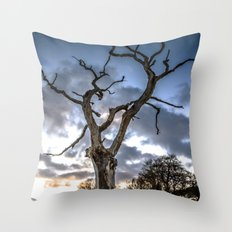 Dead of Winters Light Throw Pillow