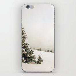 Walking in a Winter Wonderland iPhone Skin