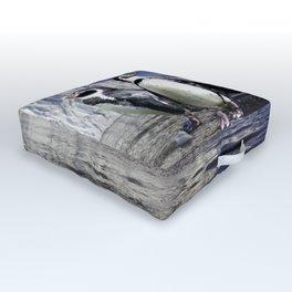 Penguins and Glacier Outdoor Floor Cushion