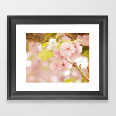 Pink Flower Photography | Shabby Chic Blossoms Framed Art Print