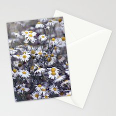 Wild Daisies Field 4130 Stationery Cards