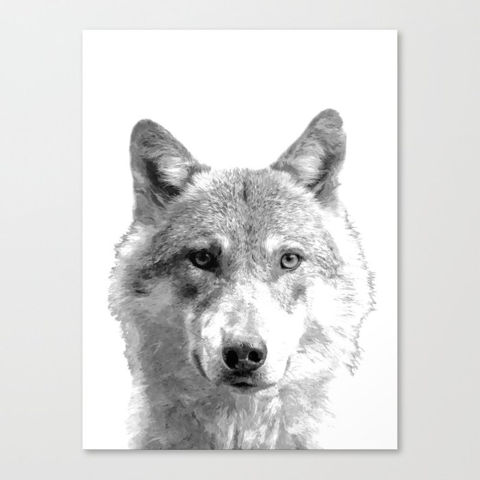 Black and White Wolf Canvas Print
