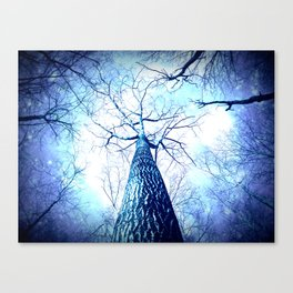 Winter's Coming : Wintry Trees Galaxy Skies Canvas Print